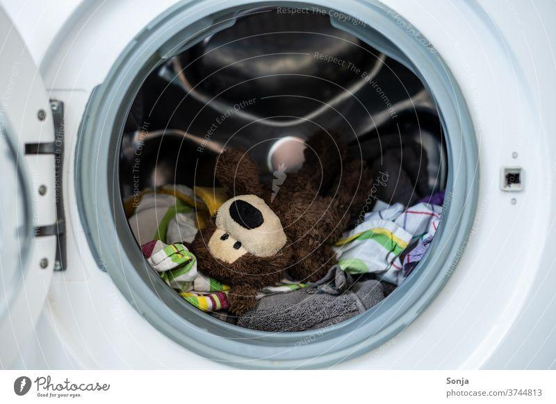 Teddybär mit Kleidung in einer Waschmaschine Wäsche waschen Schmutzwäsche Waschtag Sauberkeit Haushalt Häusliches Leben Alltagsfotografie Haushaltsführung