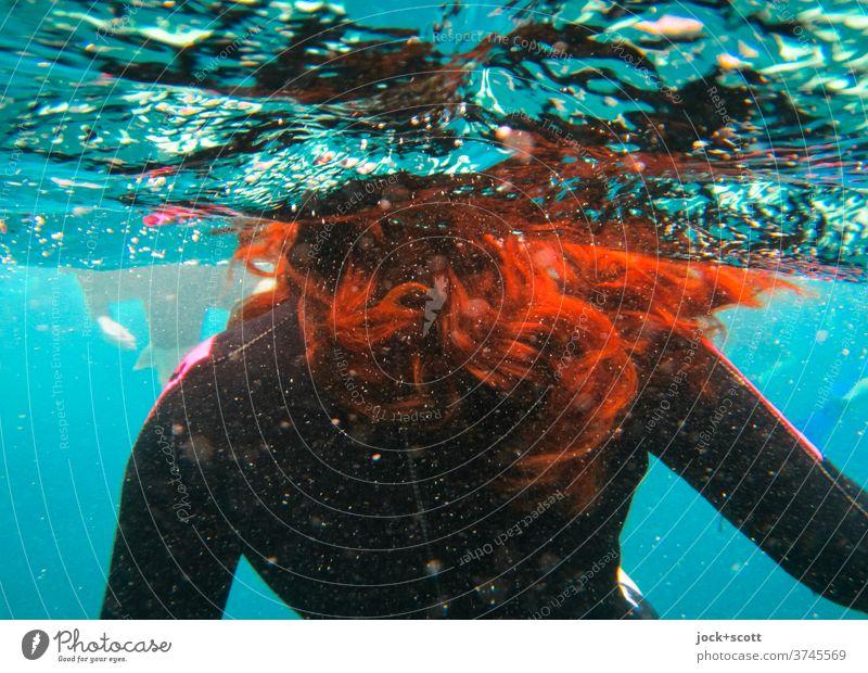 mit roten Haaren im blauen Wasser Schwimmen & Baden Tauchanzug Wasseroberfläche Pazifik Unterwasseraufnahme verwuschelt langhaarig rothaarig Neoprenanzug