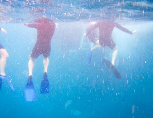 schwimmen im großen Blau Unterwasseraufnahme Schnorchler Pazifik Wärme blau Ferien & Urlaub & Reisen Körperhaltung Unschärfe Mensch Bewegung Wasseroberfläche