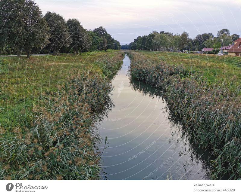 Die Schwarze Elster bei Senftenberg in der Gartenstadt Marga in Brandenburg Lausitz Senftenberger See sorbisch Lausitzer Seenland Wasser Kanal Fluss Stadtrand