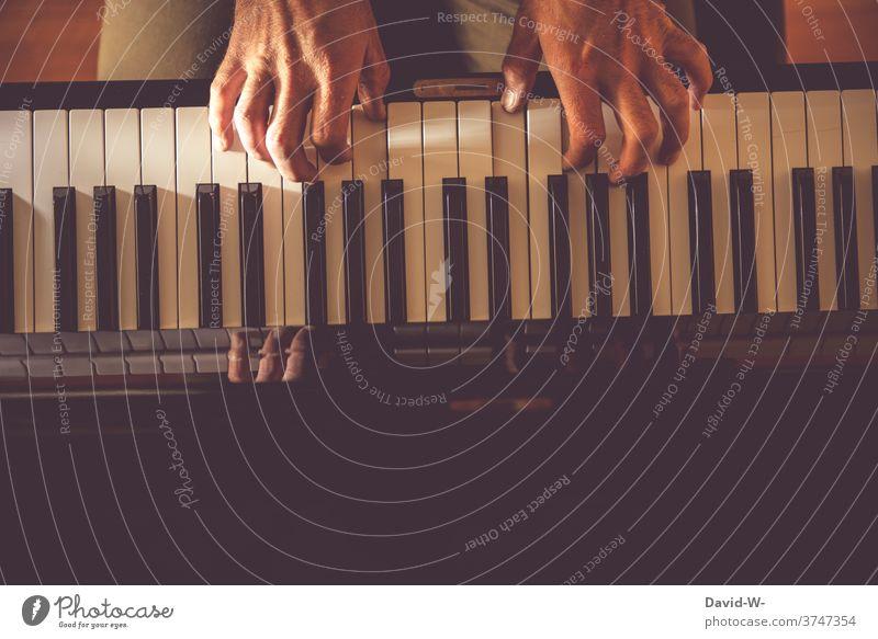 Fingerfertigkeit am Klavier | dynamisch Klavier spielen Musiker Kultur fingerfertigkeit Musikinstrument musizieren üben Künstler Klang Hände Klaviertastatur