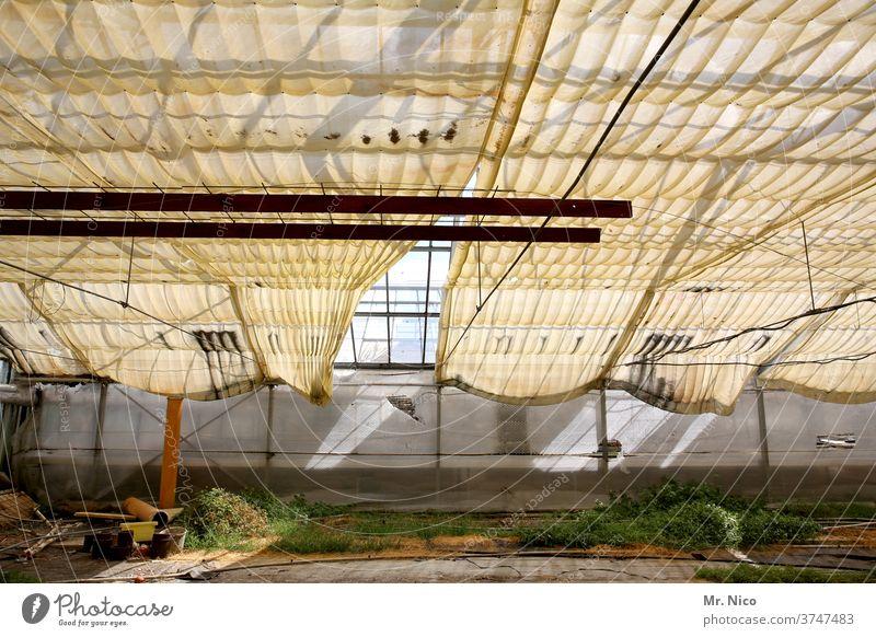 leerstehendes Gewächshaus Gebäude Abdeckung Abdeckplane Gärtnerei Verfall sonnenschutz Glasdach Botanischer Garten Aufzucht Botanik Stahlkonstruktion Wachstum