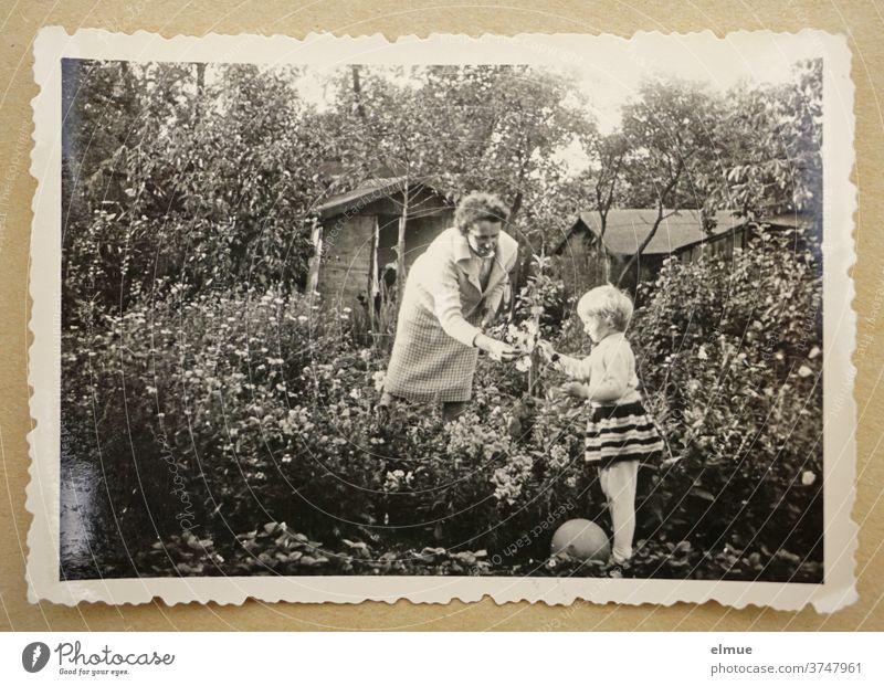 Erinnerungen an die 1960er Jahre - ein schwarz-weißer Fotoabzug mit Büttenrand liegt auf beigefarbenem Papier und zeigt ein kleines Mädchen mit seiner Mutter in einem Blumengarten mit Gartenlaube