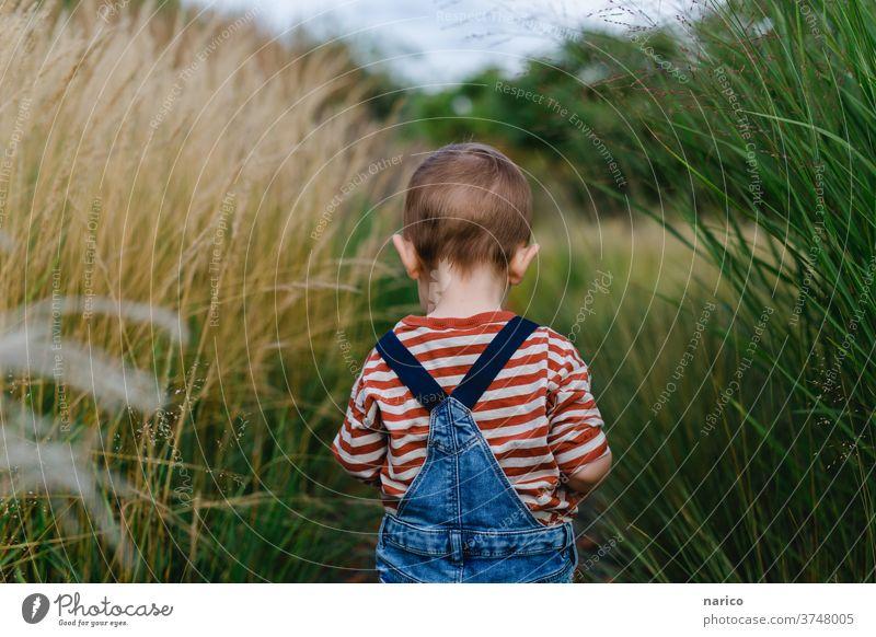 Kleinkind läuft durch Gräser Latzhose Farbfoto 1-3 Jahre Kindheit Außenaufnahme Entdecker Spielen Mensch Junge Leben Porträt Natur Schwache Tiefenschärfe