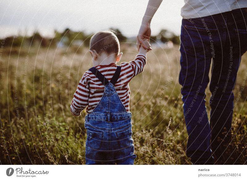 Kleinkind läuft an der Hand vom Vater durchs hohe Gras Kind Junge Farbfoto Außenaufnahme Kindheit 1-3 Jahre Händchenhalten Spaziergang Natur Latzhose