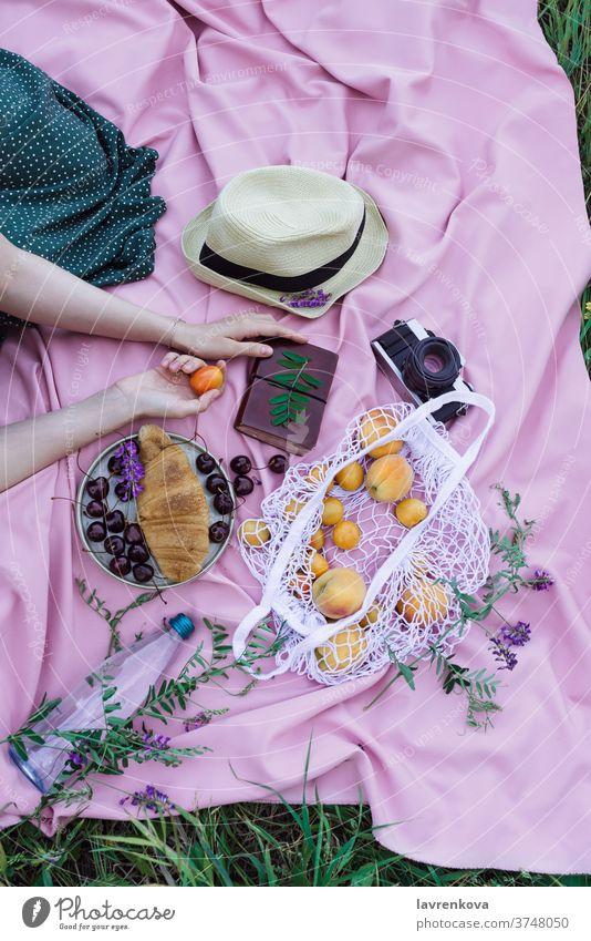 Frauenhände halten Aprikosenfrüchte auf einer rosa Decke auf einem Gras, mit frischen Früchten, Beeren und Gebäck im Freien Picknick Hände Frucht gesichtslos