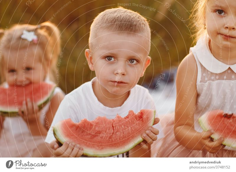 glückliche Kinder, die im Sommer bei Sonnenuntergang auf dem Feld Wassermelone essen. sommerliches Picknick. glückliche Kindheit. selektiver Fokus. Glück lässig