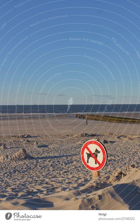 Verbot für Hunde - Verbotsschild im Sonnenlicht am Strand der Nordseeinsel mit Meer und blauem Himmel Sand Küste Insel Abendsonne Licht Schatten Außenaufnahme