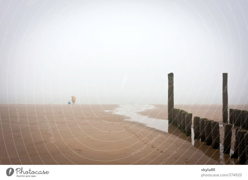 Frühaufsteher Strand Meer Küste flach Ferien & Urlaub & Reisen Erholung Sand glänzend Glück Freiheit Nordsee Wattenmeer Ebbe Sandstrand Ferne Horizont Fischer