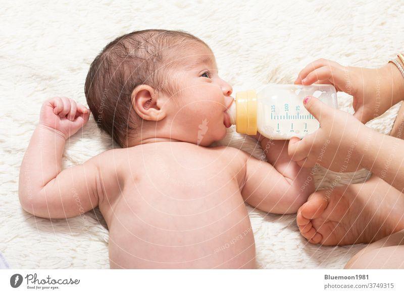 Junge Schwester füttert kleinen neugeborenen Bruder mit Milchflasche im Bett Kaukasier Gesicht füttern melken Flasche Ernährung Essen Beteiligung Mädchen Glück