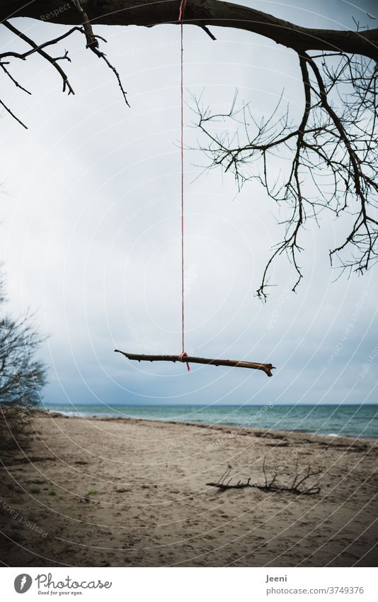 Ast hängt einsam an einem roten Seil am Ostsee-Strand Regen Winter Meer Trauer traurig kalt regnerisch Sturm Unwetter Herbst Spaziergang Wind windig blau Küste