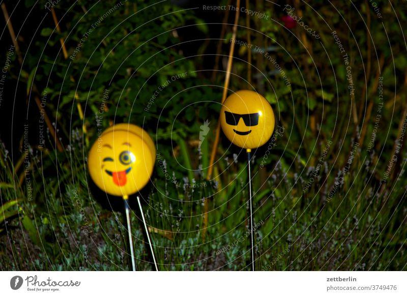 Smileys im richtigen Leben smiley gesicht portrait zwei paar lampe leuchte garten gras hecke nachbar nachbarschaft abend nacht abends nachts blitz blitzlicht