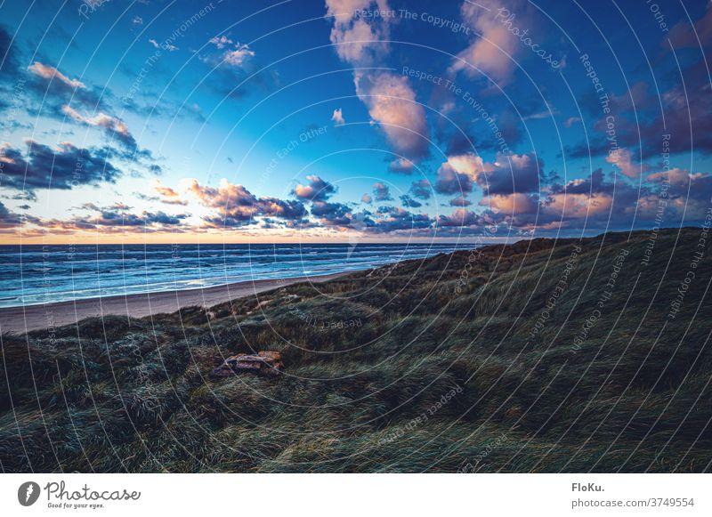 Sonnenuntergang an der Jammerbucht Strand Nordsee Küste natur landschaft nordseeküste dünen dünengras sommer urlaub erholung reise dänemark europa meer sand