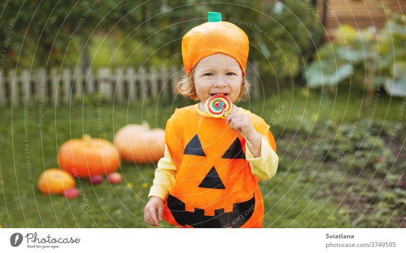 Ein süßes Mädchen in einem Kürbiskostüm hat einen bunten Lollipop auf einem Stock. Das Konzept von Halloween. Feiertag, Geschenk, Postkarte. Platz für Text