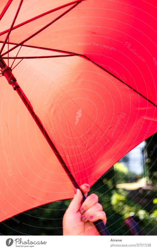 Schutzmaßnahme Schirm Sonnenschirm Regenschirm beschützen abschirmen rot heiß Sommer Hand Nagellack Sonnenschutz Regenschutz Witterung Wetter Wetterschutz