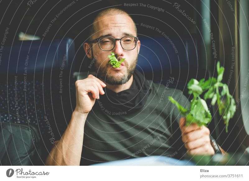 Ein Mann isst genüsslich seinen Stangensellerie im Zug. Er mag Grünzeug und gesunde Ernährung. Gesunde Ernährung Sellerie Vegane Ernährung Gesundheit