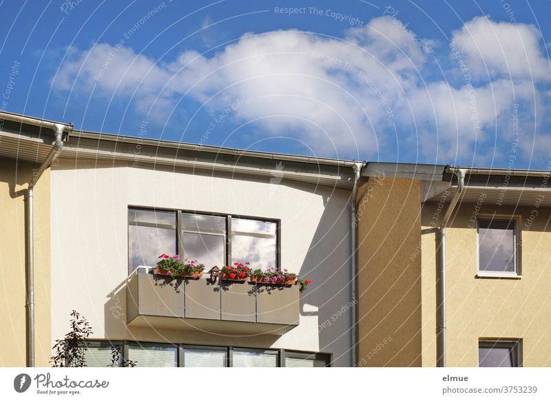 Blumen und Vogelhäuschen schmücken den Balkon vor dem großen Fenster des weißen Reihenhauses und die Schönwetterwolken spiegeln sich in den Glasscheiben wohnen