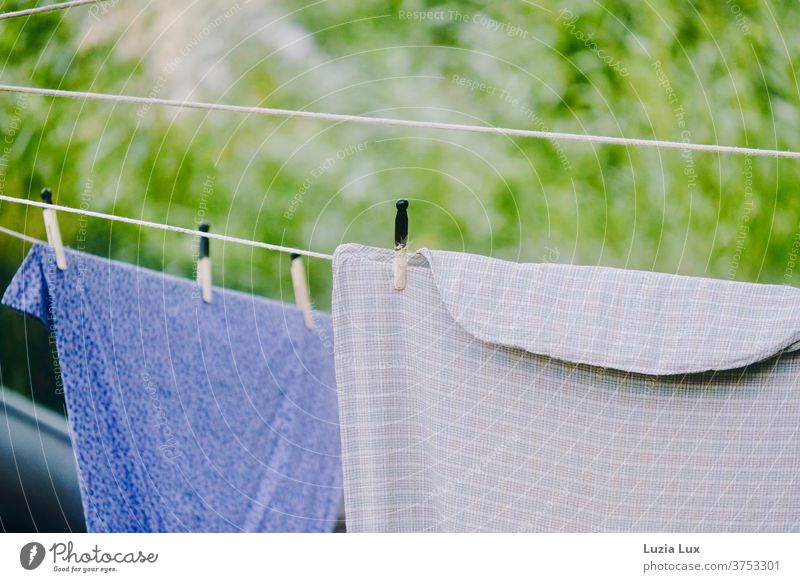Altmodische Wäsche auf der Leine, vor lichtem Grün und im Sonnenschein Wäscheleine Wäscheklammern Sommer Sonnenlicht grün trocknen Wäsche waschen Außenaufnahme