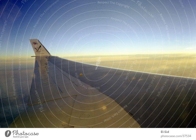 über den wolken Flugzeug Wolken Luftverkehr Himmel Ferien & Urlaub & Reisen Freiheit Technik & Technologie