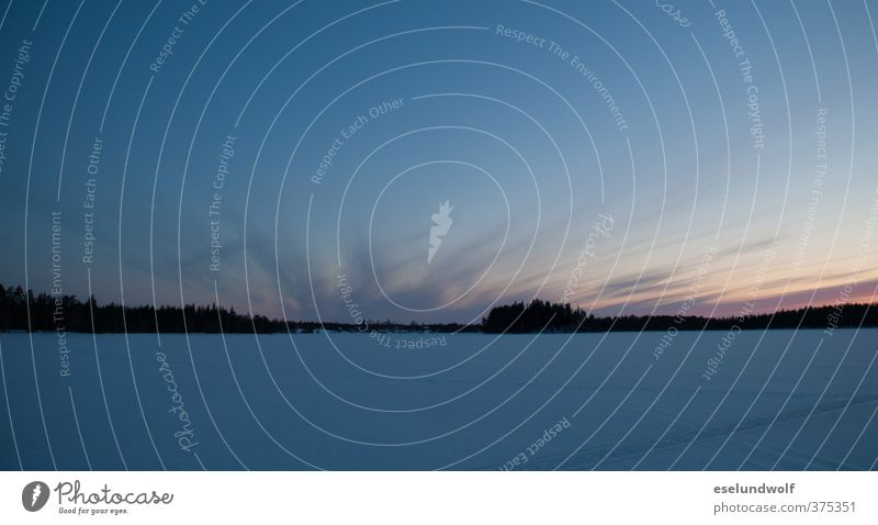 Nacht am Polarkreis Natur Landschaft Himmel Horizont Winter Eis Frost Schnee Seeufer blau Finnland Norden nordisch gefroren Ferne Farbfoto Außenaufnahme