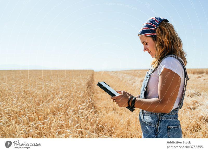 Lächelnde Frau mit Tablet im Feld Landwirt Weizen Tablette Browsen benutzend Ackerbau Landschaft ländlich Fokus Apparatur Gerät Sommer Natur Wiese Schonung