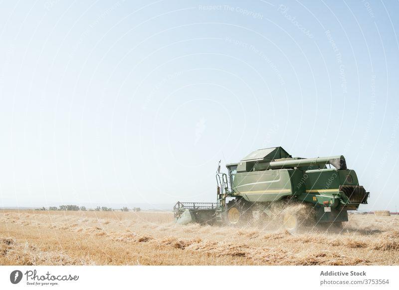 Landwirtschaftliche Maschine im Feld im Sommer Ernte Mähdrescher abholen Weizen Landschaft Bauernhof Ackerbau Saison ländlich Natur Wiese Ackerland Umwelt
