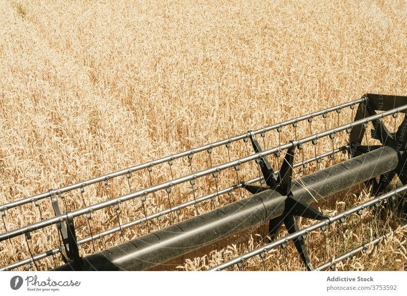Haspel des Mähdreschers im Feld Ernte Rolle Detailaufnahme Maschine Weizen Ackerbau Saison golden modern Metall Element Landschaft Wiese tagsüber Bauernhof