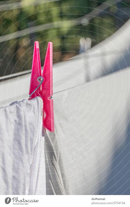 pinke Wäscheklammer auf der Leine klammern Klammer Waschtag Wäscheleine Wäschetrockner Sauberkeit putzen Wäscheklammern blasen waschen trocken reinigung
