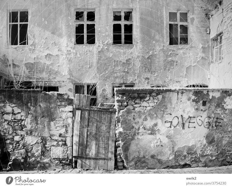 Gentrifizierung Haus Fassade Abriss Mauerreste Fenster Abbau Tageslicht menschenleer Außenaufnahme Gebäude Wand Vergänglichkeit Stein Ruine kaputt Zerstörung