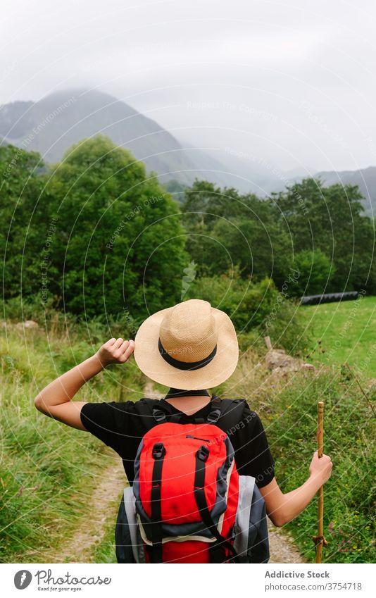 Reisender stehend auf Weg im Wald Tourist Rucksack Nachlauf reisen Wälder Natur Urlaub Abenteuer Hut Spaziergang Feiertag Sommer Aktivität Trekking Freiheit