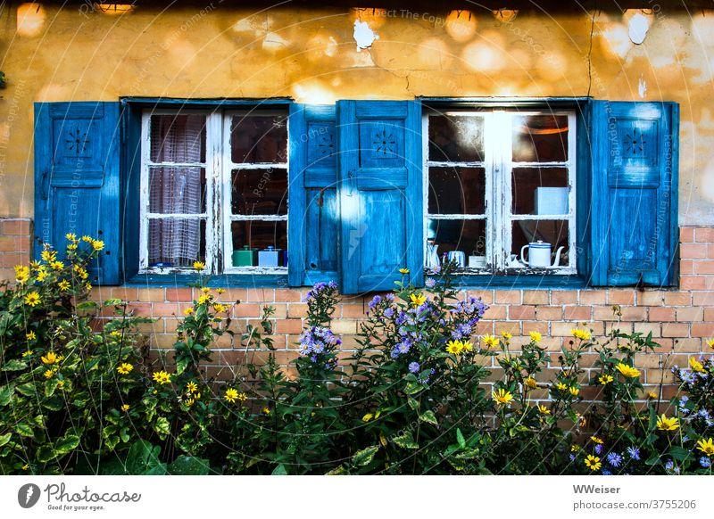 Altes gelbes Haus mit blauen Fensterläden und vielen Blumen Fassade Vorgarten wild blühen Lichtflecken Sonne Fensterrahemn alt Geschirr Zimmer Einblick Risse