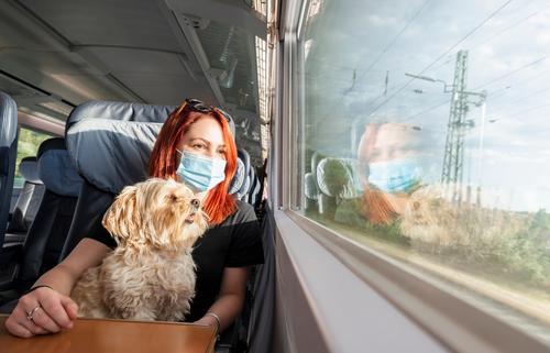 Junge Frau mit Gesichtsmaske und Hund reist mit dem Zug.Zugfahrt während der Pandemie Deutschland tausendjährig Abenteuer Business Class Wagen Kaukasier Stühle