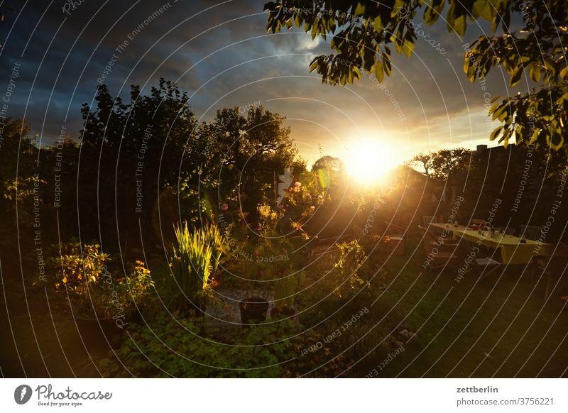 Dramatischer Sonnenuntergang im Garten abend altocumulus drohend dunkel dämmerung düster farbspektrum feierabend froschperspektive gewitter haufenwolke himmel