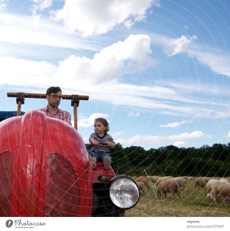 Traktor fahren Freude Glück Spielen Ferien & Urlaub & Reisen Ausflug Sommer Mensch Kleinkind Mädchen Vater Erwachsene Kindheit 2 1-3 Jahre 30-45 Jahre Wolken