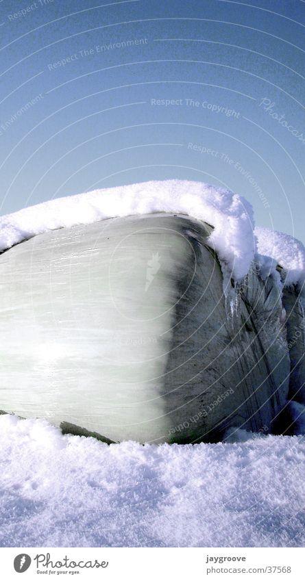 siloballen im schnee Himmel Winter Schnee Eis Silo