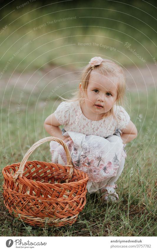 ein kleines süßes Mädchen mit einem Korb genießt einen sonnigen Tag im Park Kind Glück Baby Porträt Spielen Fröhlichkeit schön offen sorgenfrei heiter Kindheit