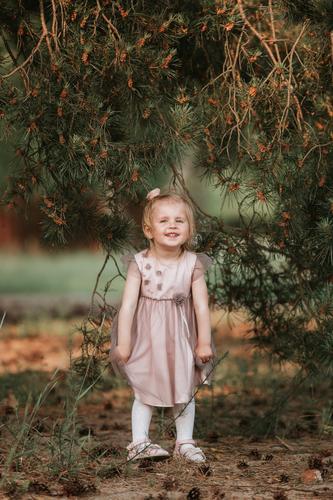 kleine süße Mädchen haben an einem sonnigen Frühlingstag Spaß unter einem Baum mit Zapfen jung Kind Fröhlichkeit schön Kaukasier heiter Kindheit niedlich grün