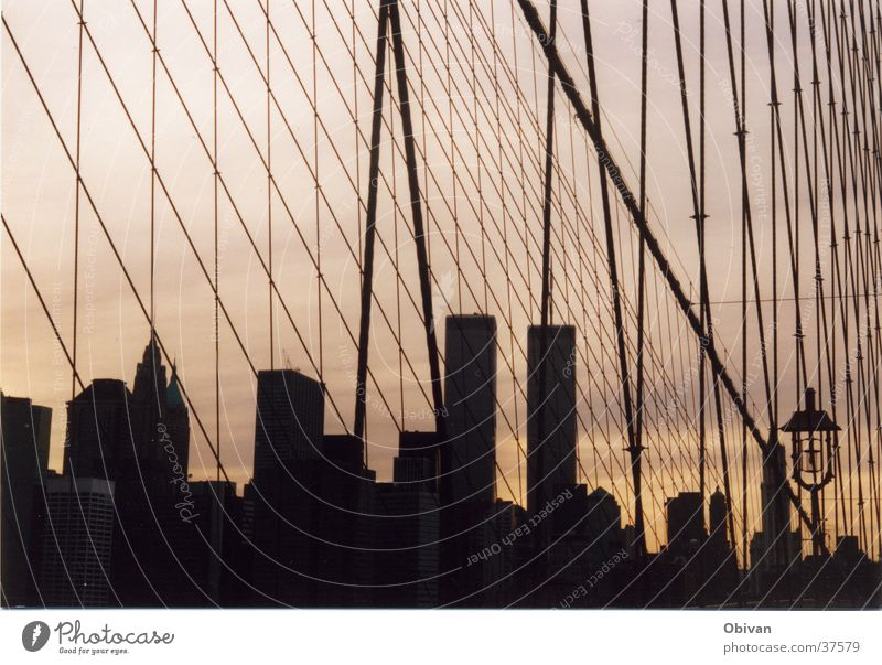 New York Skyline New York City Gebäude Nordamerika Brücke Netz World Trade Center Schatten Wollenkratzer