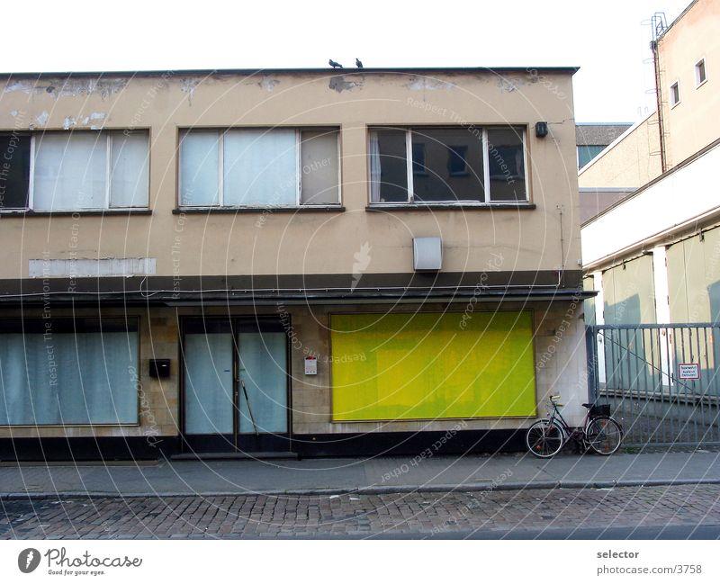 komm_lass_uns_fliegen gelb Architektur Frankfurt am Main Taube Schaufenster Empore