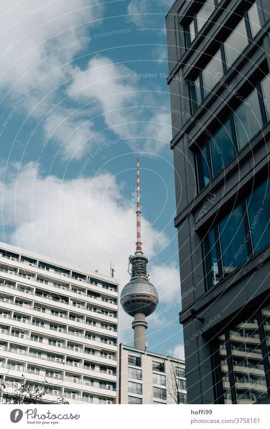 Fernsehturm mit Häuserfassaden Berliner Fernsehturm Wahrzeichen Hauptstadt Turm Berlin-Mitte Architektur Tourismus Wohnhaus Gebäude Stadtzentrum