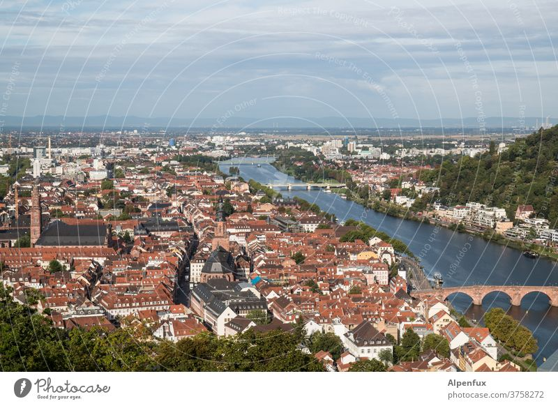 alles in HD Heidelberg Außenaufnahme Farbfoto Menschenleer Tag Altstadt Brücken Historische Bauten historischer stadtteil Stadtzentrum Gebäude Architektur