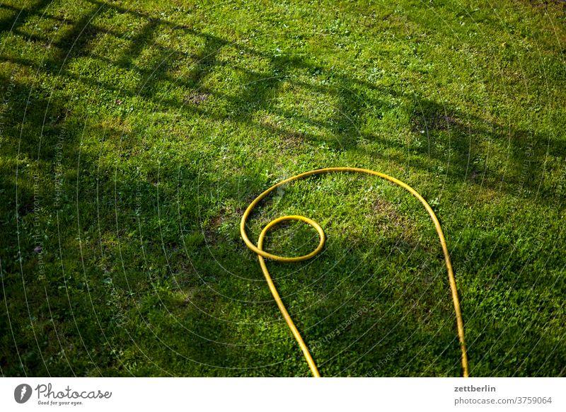 Gartenschlauch und Leiterschatten ast baum blume blühen blüte erholung ferien garten gras himmel kleingarten kleingartenkolonie menschenleer natur pflanze rasen