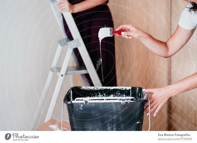 glückliches lesbisches Paar, das die Zimmerwände mit weißer Farbe streicht. Do it yourself und neues Wohnkonzept Freunde zwei Malerei Renovierung von heimwärts