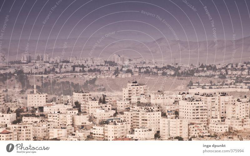 Jerusalem Umwelt Landschaft Sommer Hügel Berge u. Gebirge Wüste Israel Naher und Mittlerer Osten Wohnsiedlung Häusliches Leben Stadt Hauptstadt Stadtrand