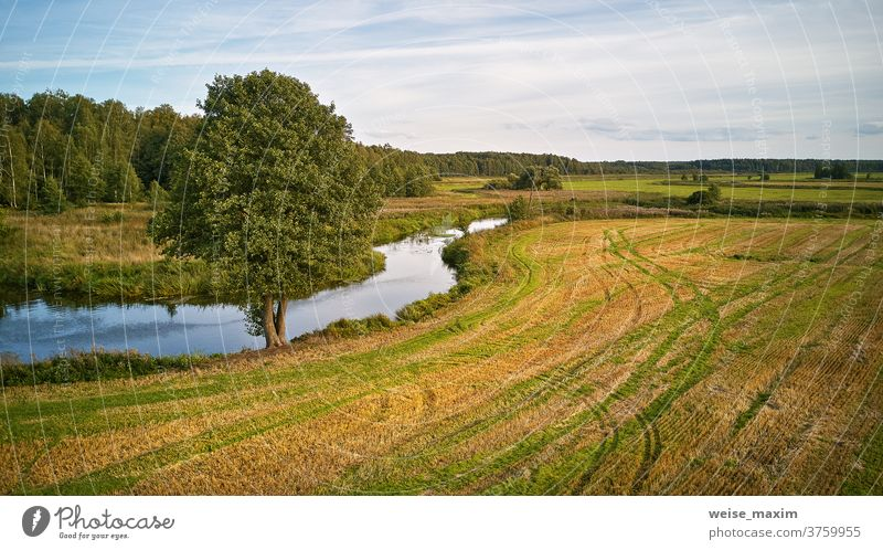 Sommerhintergrund mit Erlenbaum am Flussufer. Landwirtschaftliche Felder nach der Ernte Baum Herbst fallen sonnig Wasser September Natur Reflexion & Spiegelung