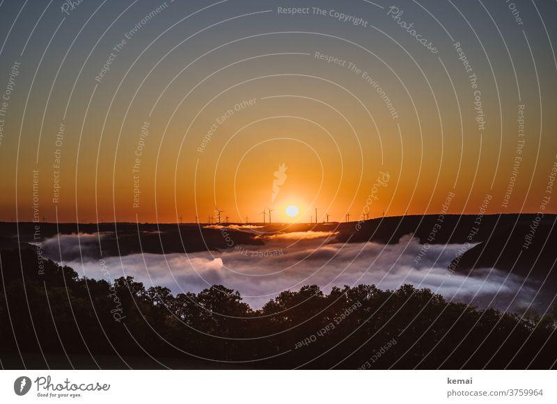 Sonnenaufgang hinter den Windrädern Himmel wolkenlos Farbig orange gelb warm Nebel Nebelmeer Windrad Energie Windenergie Baum morgens Weite Umweltschutz