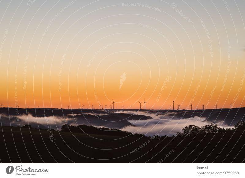 Windräder vor Nebelmehr am Morgen Himmel wolkenlos Sonnenaufgang Farbig orange gelb warm Nebelmeer Windrad Energie Windenergie Baum morgens Weite Umweltschutz