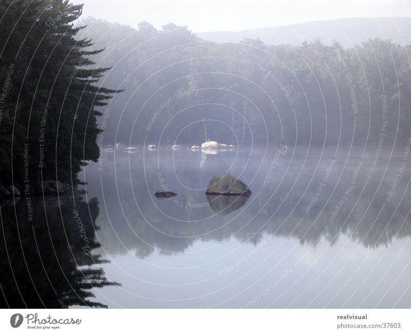 In der Ruhe liegt die Kraft II Morgen Spiegelbild Sommermorgen Wasser blaue Stimmung Morgendämmerung