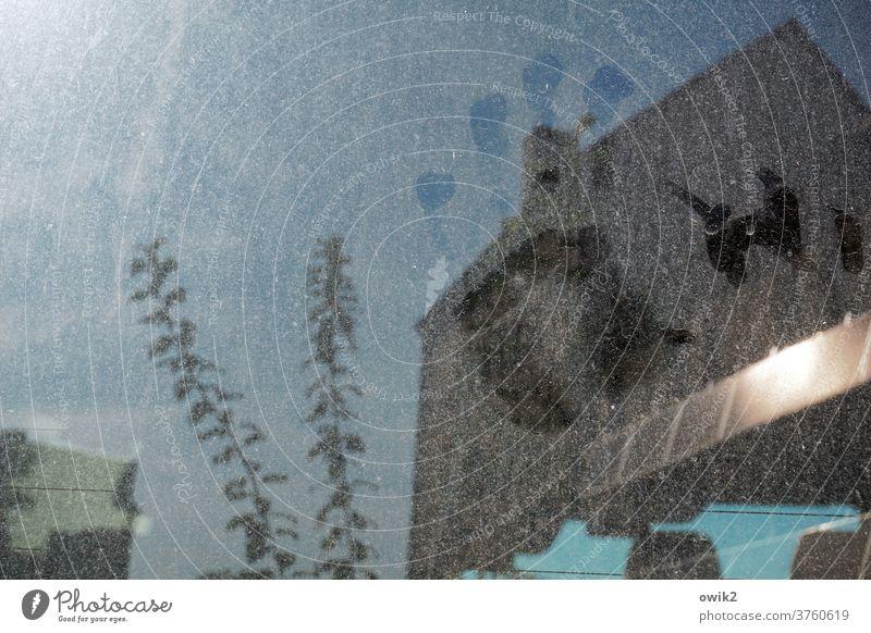 Im falschen Film geheimnisvoll rätselhaft unklar Detailaufnahme Menschenleer Außenaufnahme Fenster Farbfoto Reflexion & Spiegelung still Tageslicht Schatten