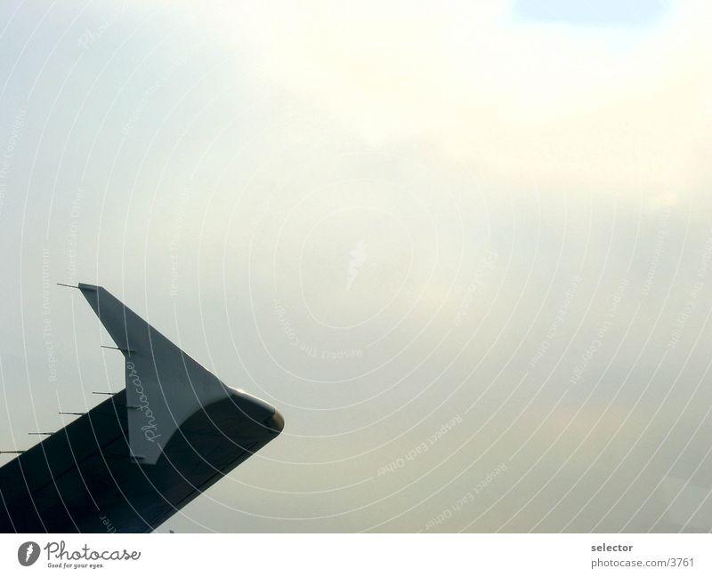 blauwal Flugzeug Wolken Ferien & Urlaub & Reisen wiederkommen oben Elektrisches Gerät Technik & Technologie Himmel Flügel Wege & Pfade